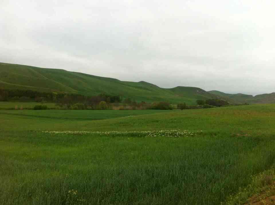 کشاورزی پارس آباد